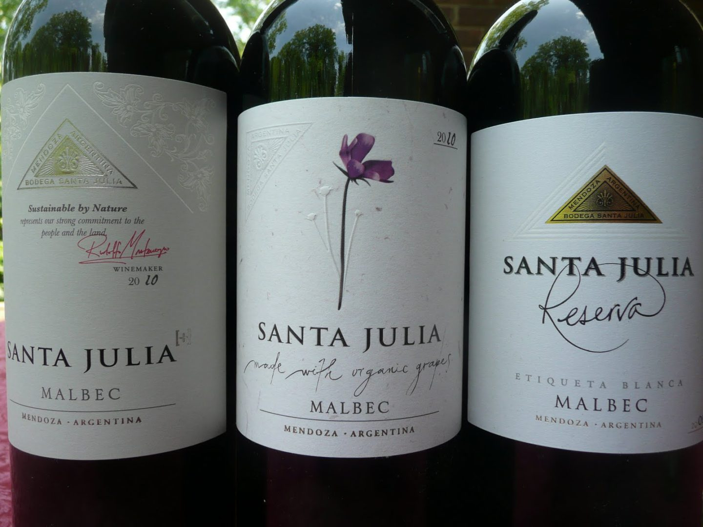 Three examples of Malbec wine produced in Mendoza / source