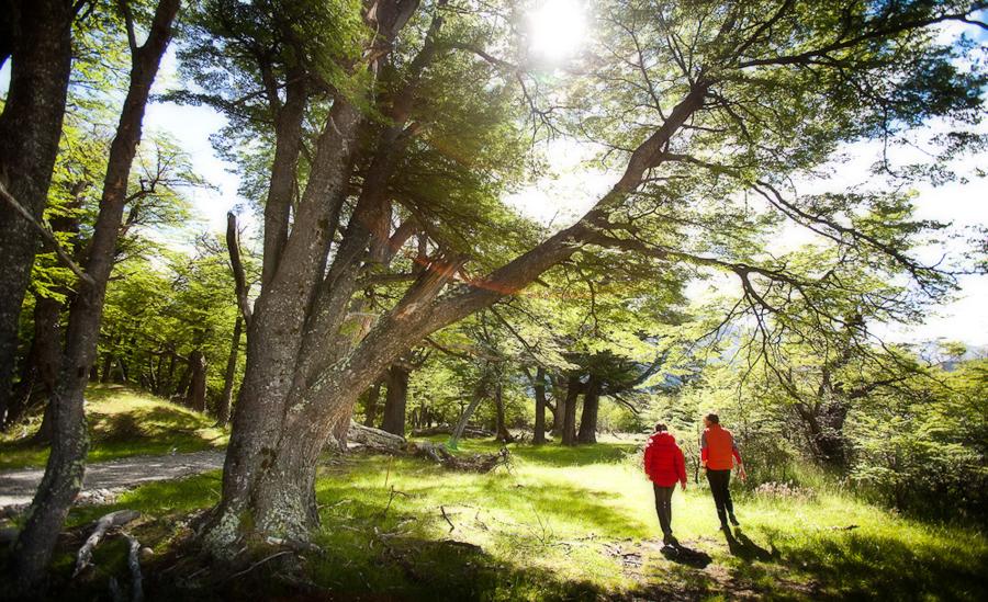 La magnifique réserve privée Los Huemules / source