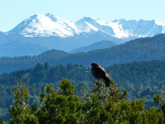 Il y a des vues incroyables à chaque recoin de Bariloche / Argentina4u