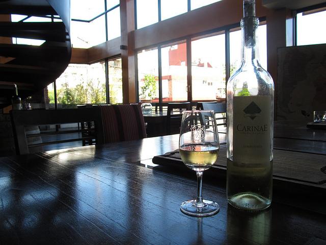Dégustation de vin à Buenos Aires - Boutique Anuva Wines